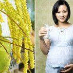 Uống nước dừa khi nào là tốt cho bà bầu?