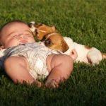 Tắm nắng cho bé